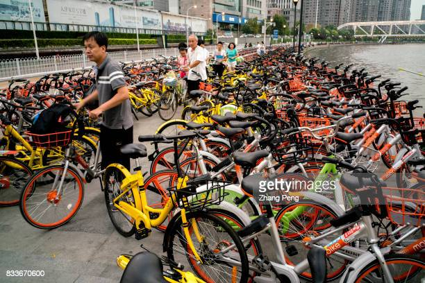 All kinds of shared bikes under the bridge beside the Haihe river The rapid development of sharing bicycles brings new problems to city management