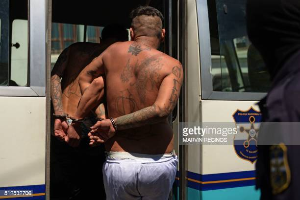 Alleged members of the MS13 and 18 gang board a police vehicle after being presented to the press in San Salvador on February 26 2016 Members of the...