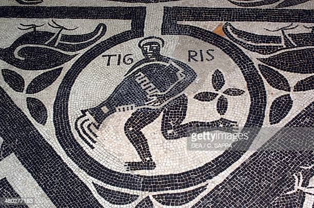 Allegory of the Tigris one of the four rivers that according to the Bible rise in Paradise detail from a Medieval floor mosaic presbytery of Novara...