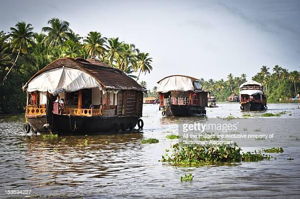 Alleppey backwaters