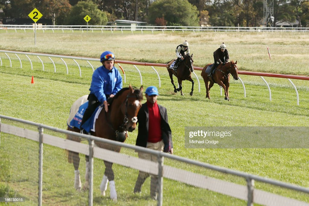 Allesandro Guerrini rides Mount Athos behind his lead horse as Royal Empire gets taken back by trainer Saaed bin Suroor during trackwork ahead of the Melbourne Cup at Werribee Racecourse on November 4, 201 in Melbourne, Australia.