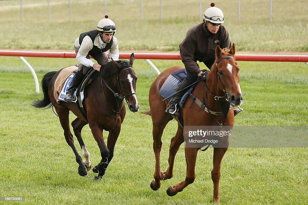 Allesandro Guerrini rides Mount Athos behind his lead horse during trackwork ahead of the Melbourne Cup at Werribee Racecourse on November 4, 201 in Melbourne, Australia.