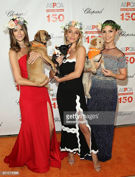 Allie Rizzo Jessie Schuster and Georgina Bloomberg attend the 19th Annual ASPCA Bergh Ball attends the 19th Annual ASPCA Bergh Ball at The Plaza...