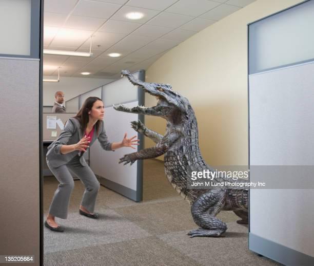 Cocodrilo atacando mujer de negocios en oficina independiente