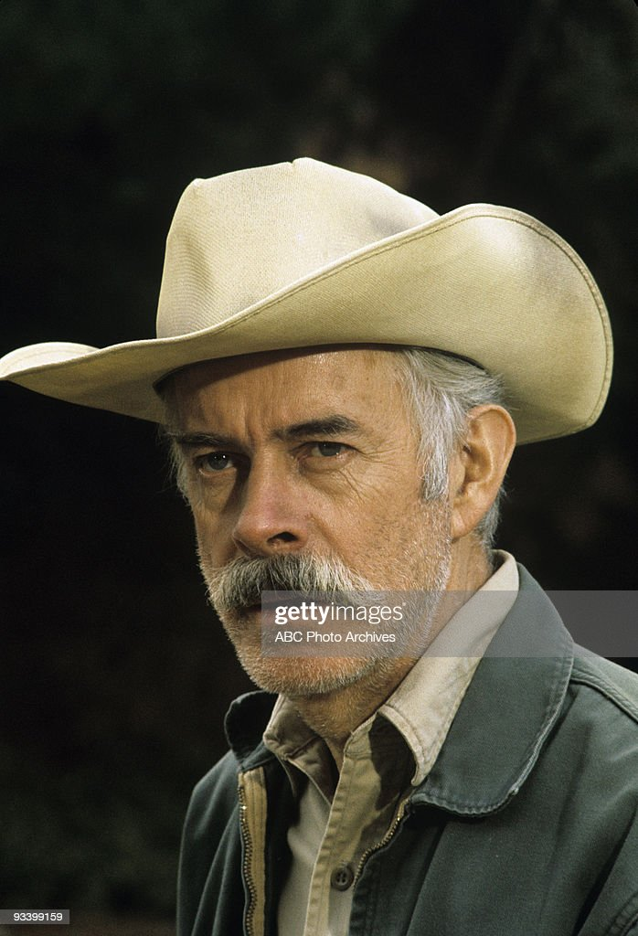 harry morgan actor