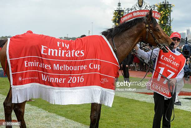 Almandin after winning Emirates Melbourne Cup at Flemington Racecourse on November 01 2016 in Flemington Australia