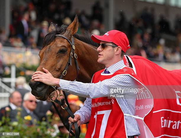Almandin with strapper Joel Flannery after winning Emirates Melbourne Cup at Flemington Racecourse on November 01 2016 in Flemington Australia