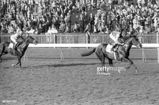 Almost as though dancing to victory NIJINSKY with Lester Piggott up wins the Dewhurst Stakes by three lengths from Recalled at Newmarket