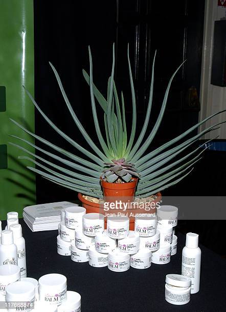Aloe Vera display at Janet Harris during Silver Spoon PreOscar Hollywood Buffet Day One at Private Residence in Los Angeles California United States...
