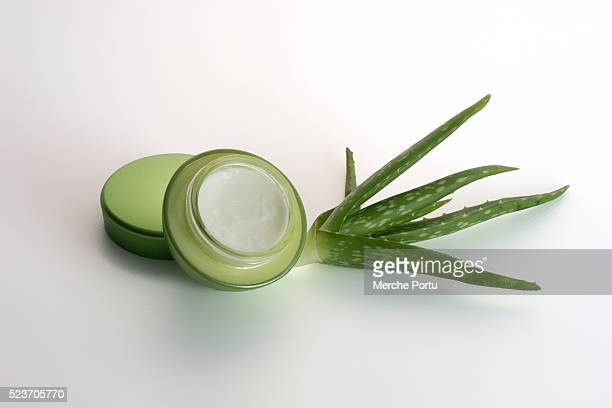 Aloe vera facial cream