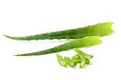 Aloe vera fresh leaf isolated closeup on white background.