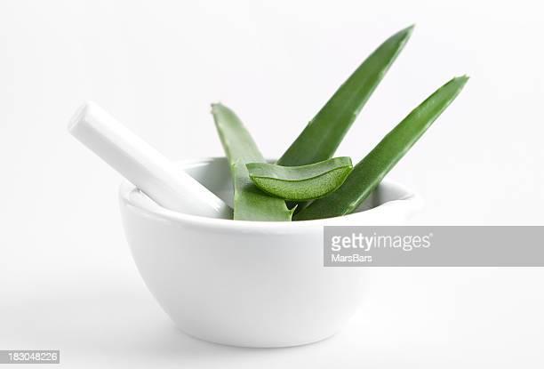 L'Aloe vera au pilon sur fond blanc