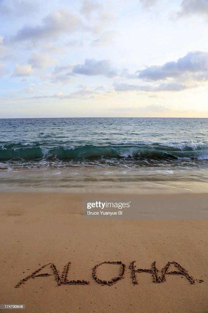 Aloha on beach : Stock Photo