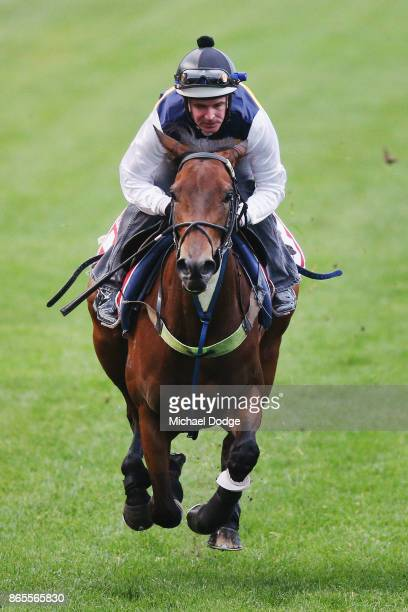 Aloisia ridden by Luke Nolen gallops during Breakfast With The Stars at Moonee Valley Racecourse on October 24 2017 in Melbourne Australia