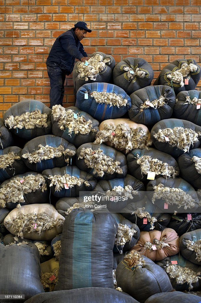 Alpaca Wool Factory In El Alto, Bolivia : Stock Photo