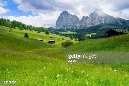 di Siusi Alpe