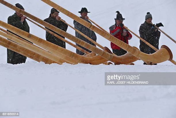 Alphorn players blow their instruments as snow falls on the Fellhorn mountain near Oberstdorf southern Germany during a ceremony to inaugurate a new...