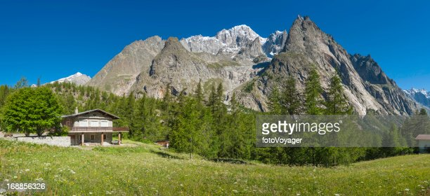Alpine chalet in wildflower meadow under mountain peaks panorama