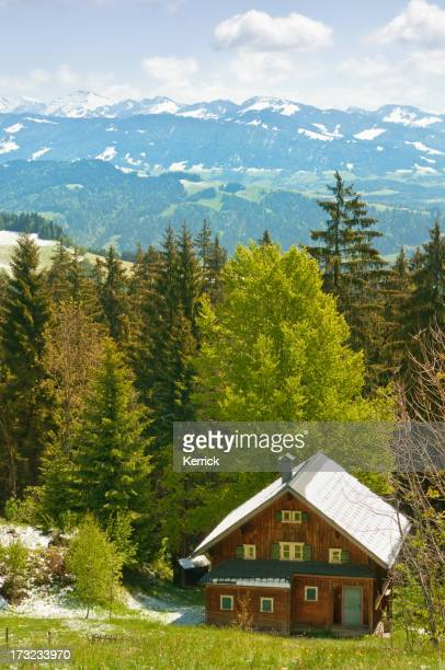 Alpine hut in the alps