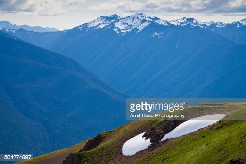 Alpine landscape against Mount Olympus, Washington