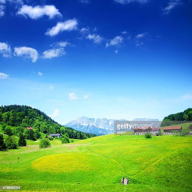 Alpine Landschaft