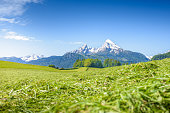 National Park Berchtesgaden, Snowy Watzmann with alpine meadow