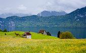 Alpine pasture and Lake Lucerne