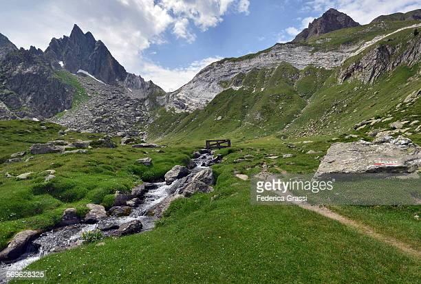 Alpine Pasture at Alpe Campolungo