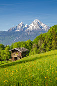 Beautiful view of idyllic mountain scenery in the Alps with traditional mountain chalet and fresh green mountain pastures with blooming flowers on a sunny day with blue sky and clouds in summer