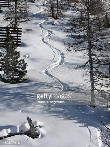 Alpine Skiing : Stock Photo