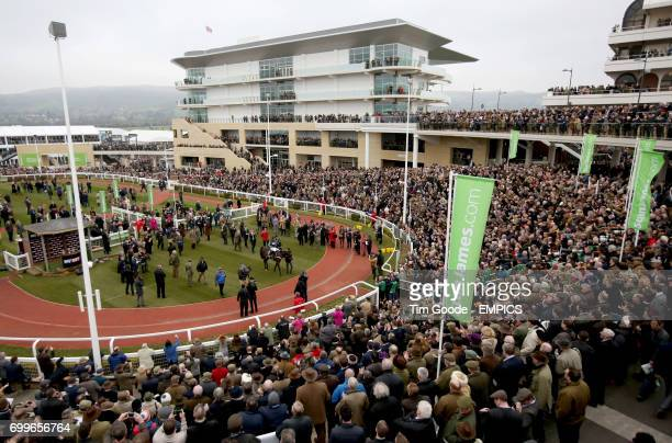 Altior ridden by Nico de Boinville enters the winners enclosure after winning the Sky Bet Supreme Novices Hurdle during Champion Day at the 2016...