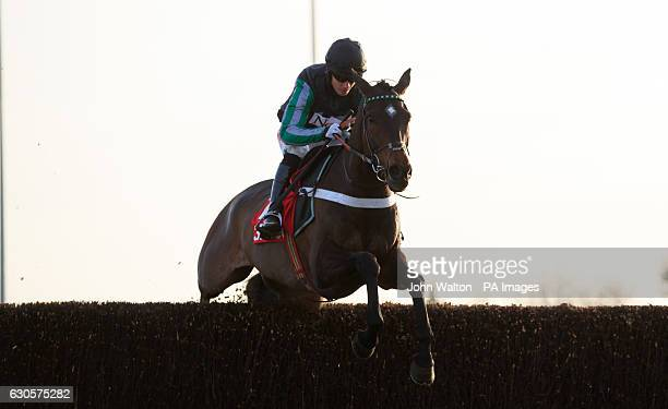 Altior ridden by Noel Fehily jumps the last on the way to winning The 32Redcom Wayward Lad Novices' Chase during day two of the 32Red Winter Festival...