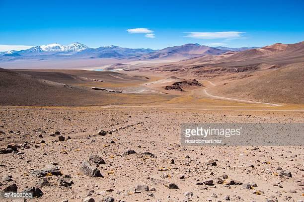 Altiplano near Copiapo, Chile