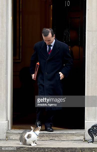 Alun Cairns Secretary of State for Wales passes Larry the Cat as he departs No10 Downing street after British prime minister Theresa May's weekly...
