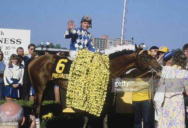 Alysheba and jockey Chris McCarron celebrate and wave to the crowd in the winners circle during the Preakness Stakes at the Pimlico Race Course on...