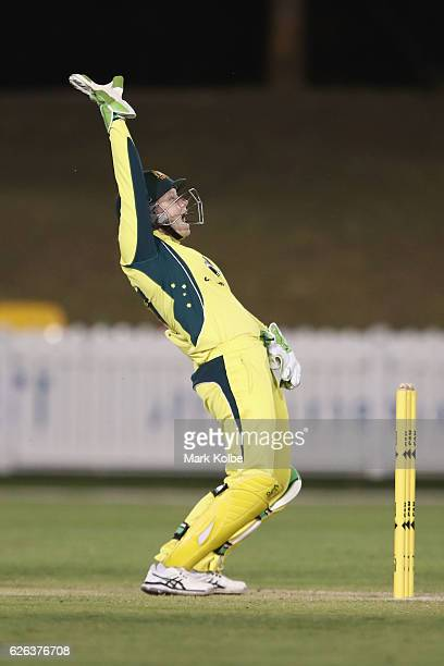 Alyssa Healy of Australia appeals during the women's one day international match between Australia and South Africa on November 29 2016 in Coffs...