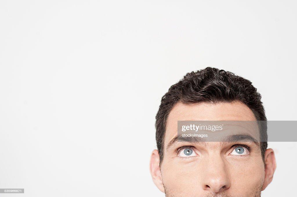 I am hiding here ! : Stock Photo