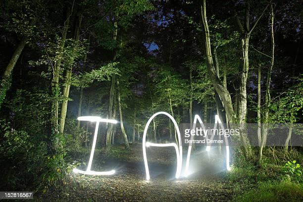 'I am' written in light in a forest