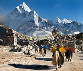Ama Dablam with caravan of yaks and prayer flags - way to Mount Everest base camp - Sagarmatha national park - Nepal
