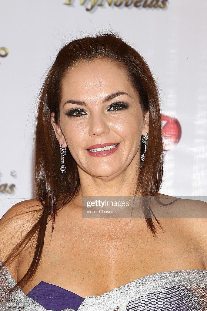Amairani attends the Premios Tv y Novelas 2014 at Televisa Santa Fe on March 23, 2014 in Mexico City, Mexico.