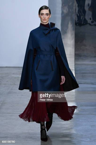 Amanda Googe walks the runway at Carolina Herrera show during New York Fashion Week on February 13 2017 in New York City