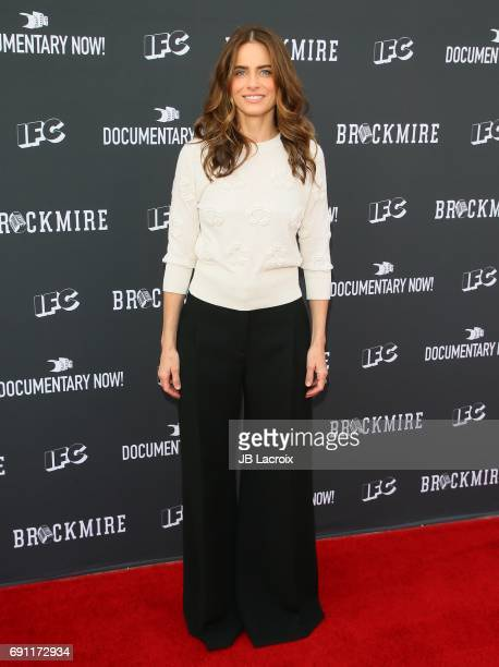 Amanda Peet attends the FYC Event For IFC's 'Brockmire' and 'Documentary Now' at Saban Media Center on May 31 2017 in Beverly Hills California