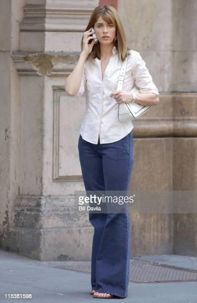 Amanda Peet during Nancy Myers Untitled Project at New York City in New York City New York United States