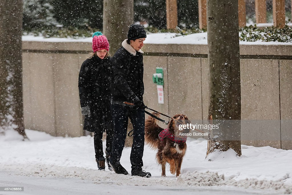 Amanda Seyfried and Justin Long walk their dog Finn on December 17, 2013 in New York City.