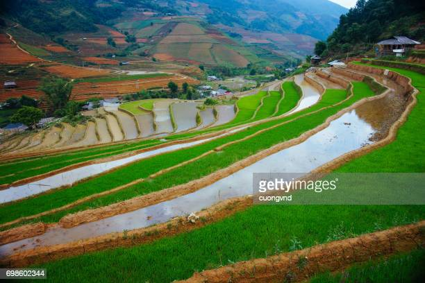 Amazing abstract texture of rice terraces fields with sky colorful reflection in water.
