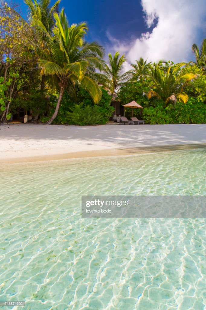 Amazing beach in Maldives. Summer travel holiday background concept. Instagram effect