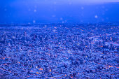 """Typical night view enjoyment spot in Sapporo authorized by """"the Japanese new three big night view"""""""