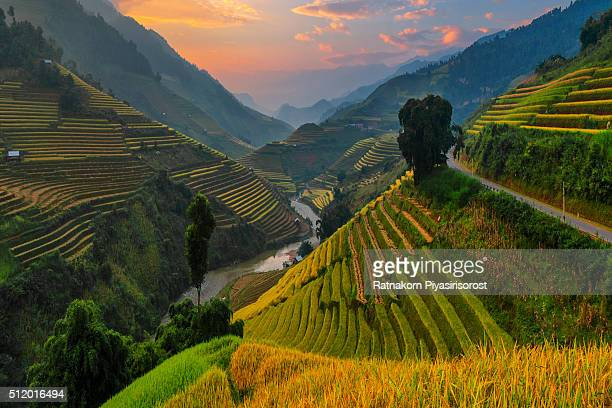 Amazing Rice terraces at Mu Cang Chai, Vietnam