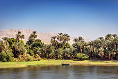 Amazing scenario at the Nile River edge with palm trees, grass and rock mountains in the background in a blue sky day