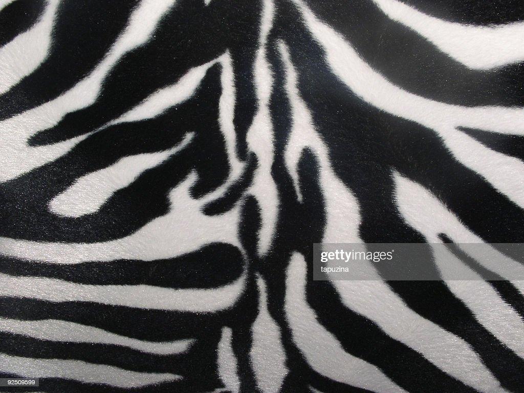 Amazing Zebra Texture